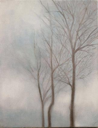 Brumes/mist